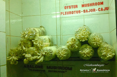 Mushrooms at Mushroomburgers Tagaytay - Schadow1 Expeditions