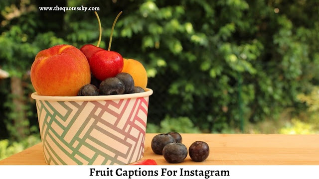 201+ Fruit Captions For Instagram [ 2021 ] Also Fruit Quotes