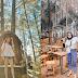 Warung Pinus Damasus : Tempat Nongkrongan Cafe Keren & Cantik di Danau Toba, Review Kuliner, Lokasi