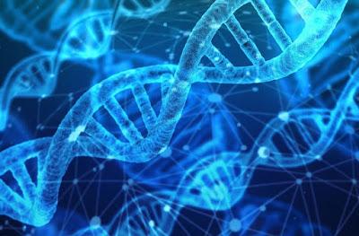 Bệnh đau dạ dày có di truyền không