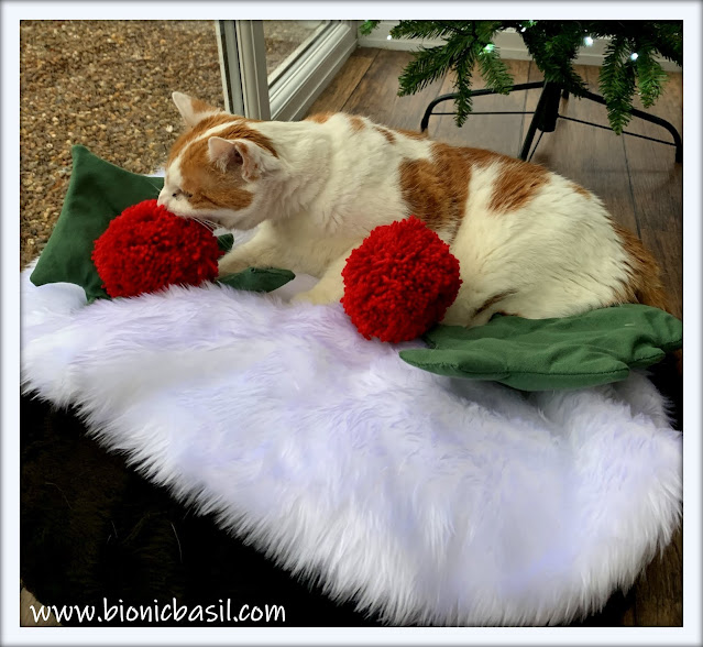 Book Reviews with Amber  #149 ©BionicBasil® Getting Some Catmas Pudding a