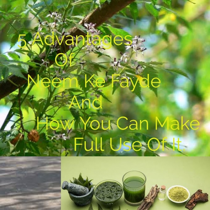 5 Advantages Of Neem Ke Fayde And How You Can Make Full Use Of It.