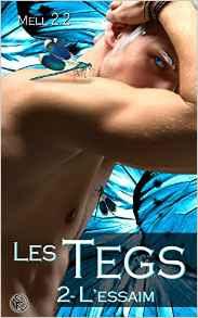 http://lesreinesdelanuit.blogspot.be/2016/12/les-tegs-t2-lessaim-de-mell-22.html