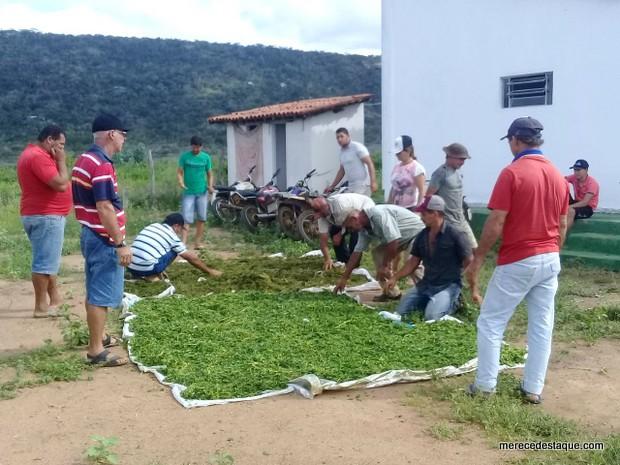 Cursos de caprinocultura e avicultura movimentam a zona rural de Santa Cruz do Capibaribe