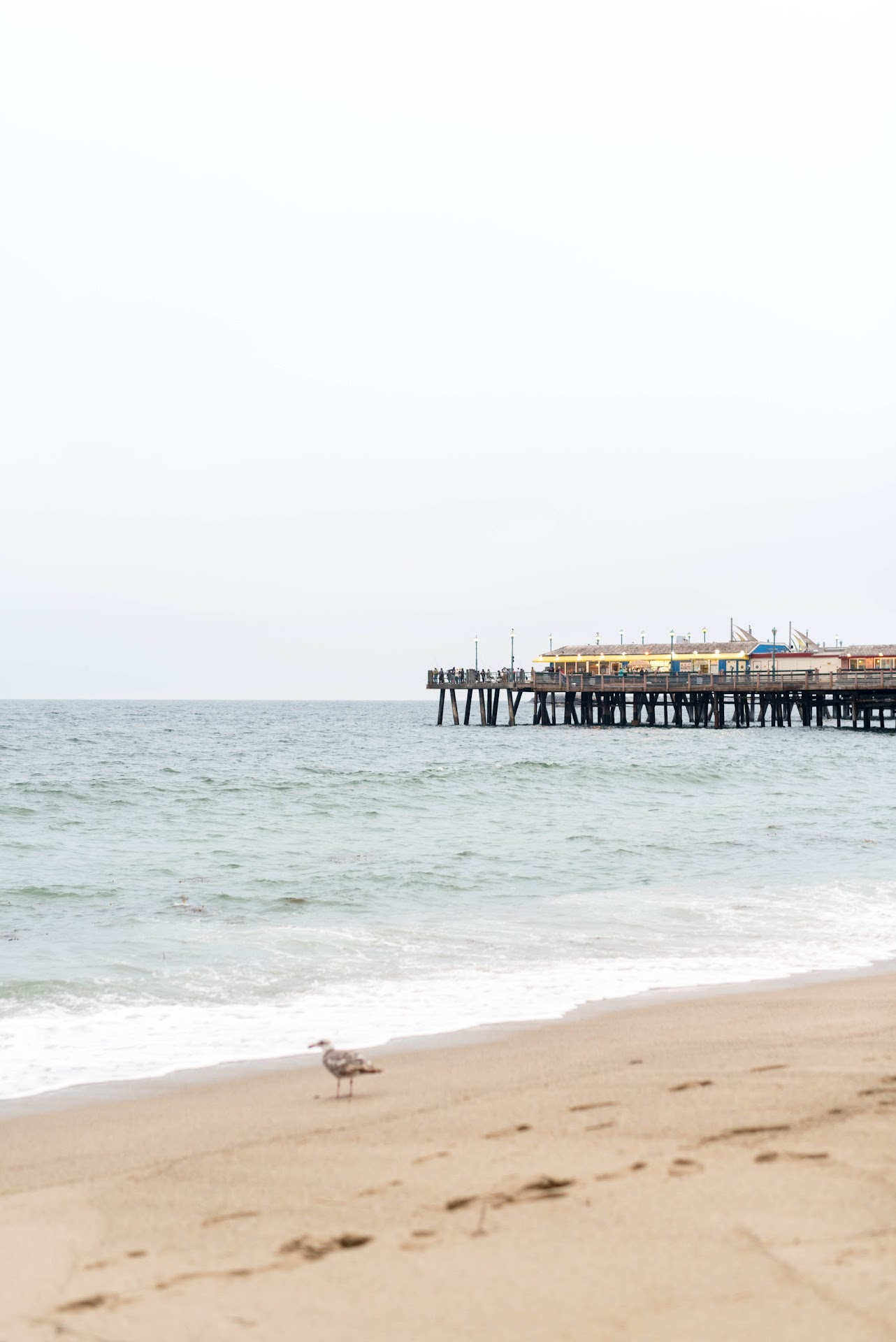 pier, things to do in torrance, southern california, socal, socal beachers, less crowded, things to do in torrance