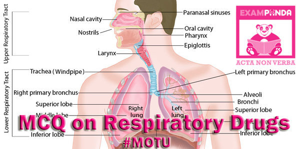 mcq on drug used in respiratory system