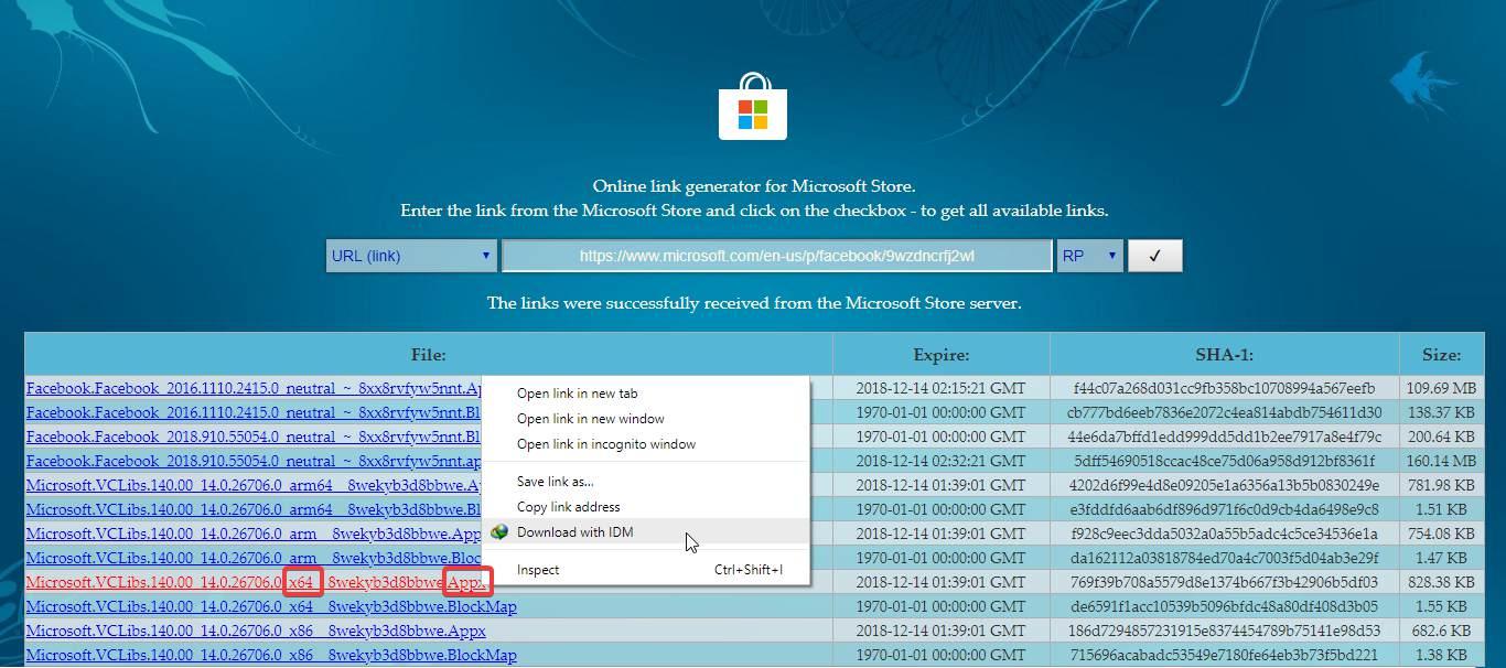 Download Offline Aplikasi dari Microsoft Store (Bisa IDM)