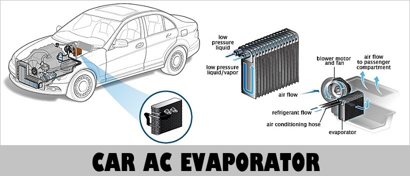 Mildew Smell in Car AC