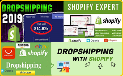 Earn money Online with this Shopify drop shipping website with Ali express and Oberlo