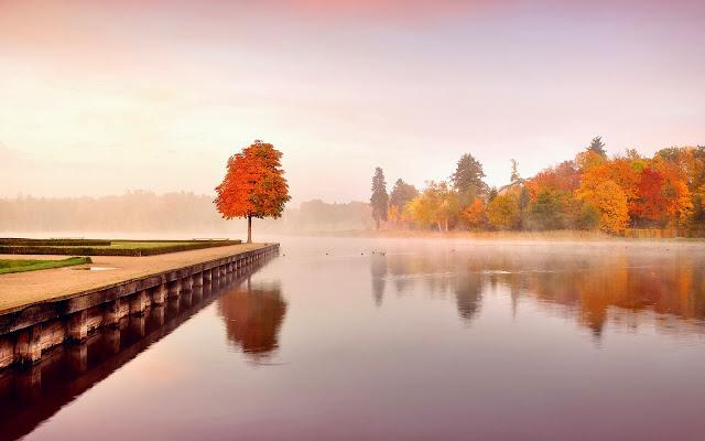 Een meer en bomen met herfstbladeren