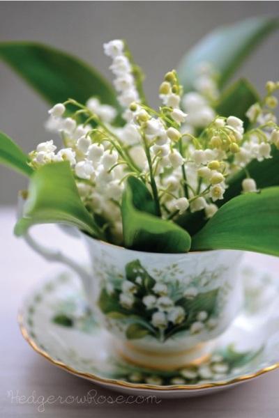 Lily of the Valley dalam cangkir bermotif bunga yang sama.