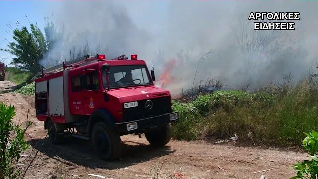 Πυρκαγιά στα Πυργιώτικα κινητοποίησε την Πυροσβεστική στο Ναύπλιο