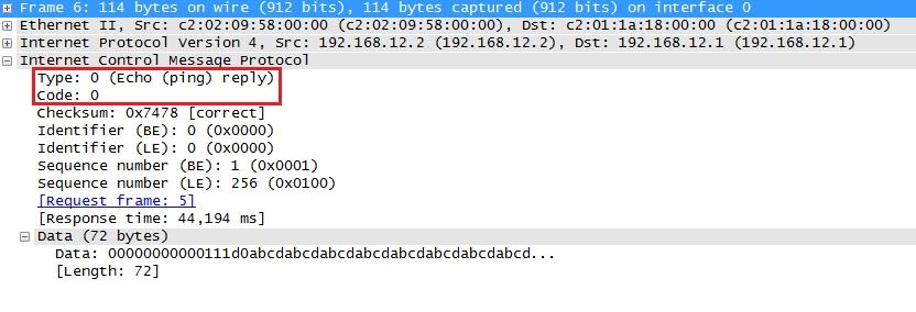 يلتقط Wireshark رد صدى ICMP
