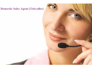 Domestic Sales Agent (Telecaller)