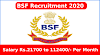 BSF Recruitment 2020 Notification 317 CT, HC, SI, Mechanic Posts
