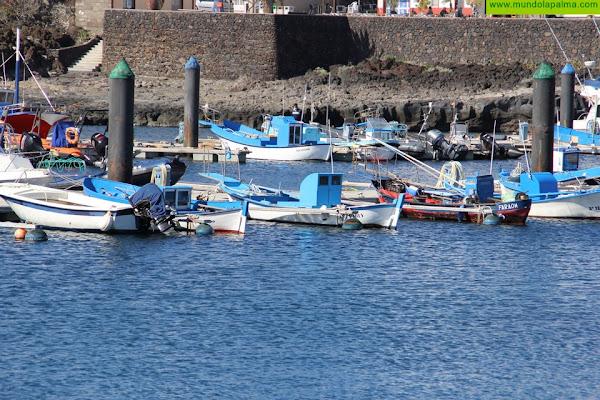 El Gobierno canario concede 7,7 millones de euros para los operadores de pesca artesanal, industrial y la acuicultura
