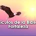 25 Versículos de la Biblia de Fortaleza