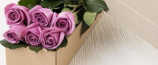Maksud bunga ros