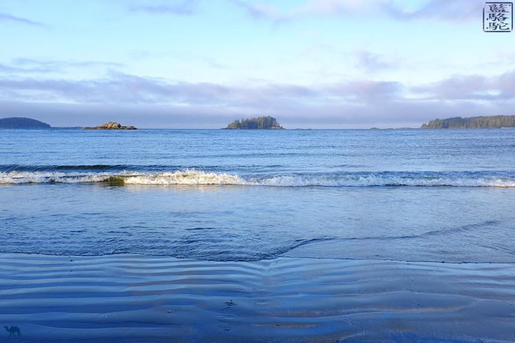 Le Chameau Bleu - Plage de Tofino sur l'ile de victoria Canada