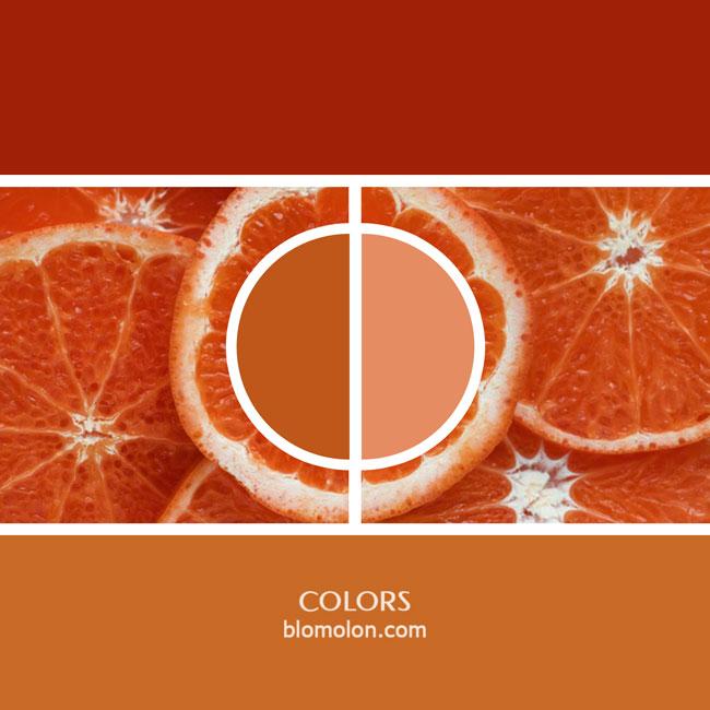 variedad_en_color_color_16