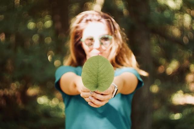 45 Good Sustainability Blog Names