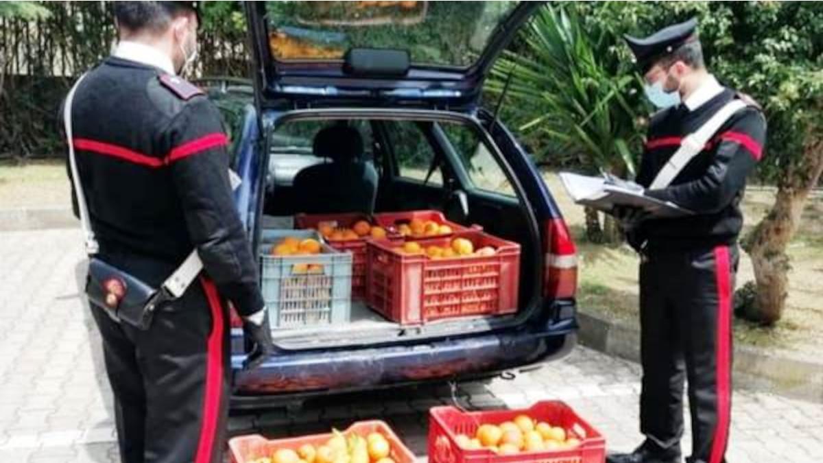 arance Carabinieri