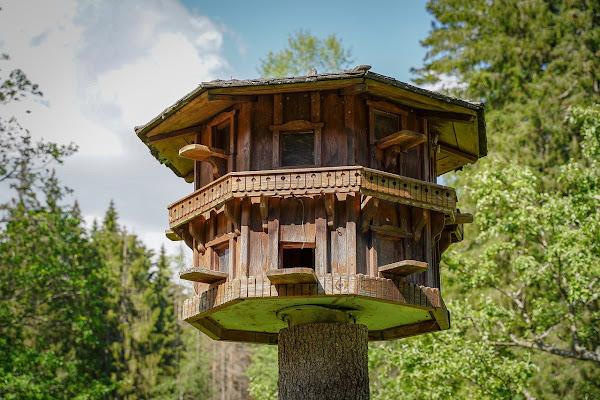 Cara Membuat Rumah Pohon Sederhana Dari Kayu Bambu Arafuru
