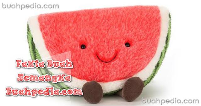 Watermelon fact