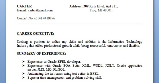 oracle bpel developer sample resume format in word free