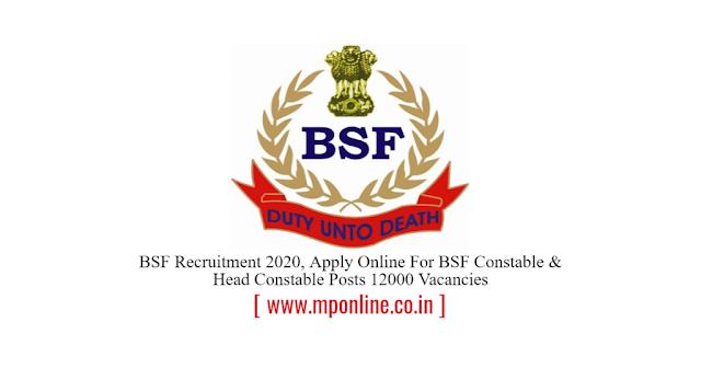 BSF Jobs