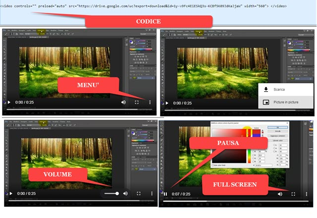 player video html5