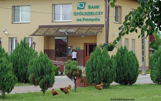 http://fotobabij.blogspot.com/2016/05/frampol-bank-spodzielczy-ziarnko-do.html
