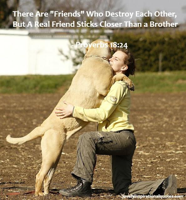 bible+verses+on+friendship