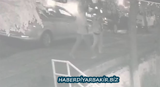 Diyarbakır'da kameraya yansıyan kapkaççı serbest bırakıldı