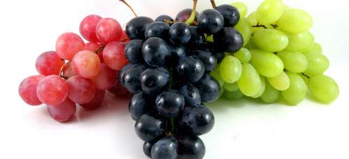 SAÚDE: Uvas sem sementes têm substâncias cardioprotetoras