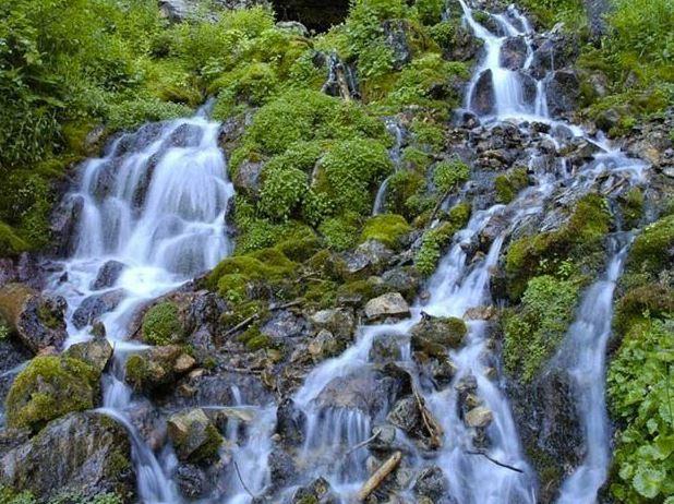 Wonderful Fact About Mountain Spring
