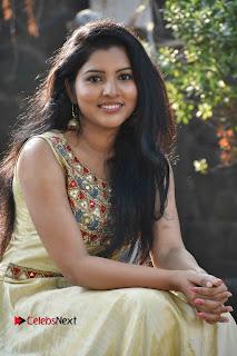 Actress Nayana Nair Stills in Long Dress at Arasakulam Tamil Movie Audio Launch  0006.jpg