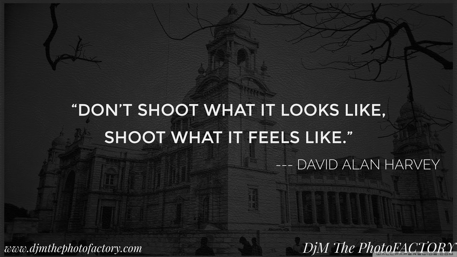Quotes of photographer