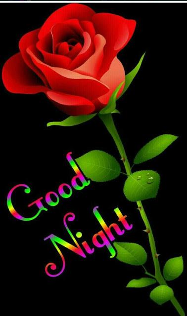 good night rose gif image