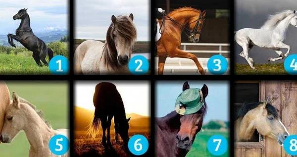 Тест - выбранный вами конь расскажет вам о ваших желаниях!
