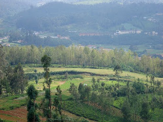 Ketti Valley - Ooty