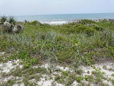 Apollo Beach