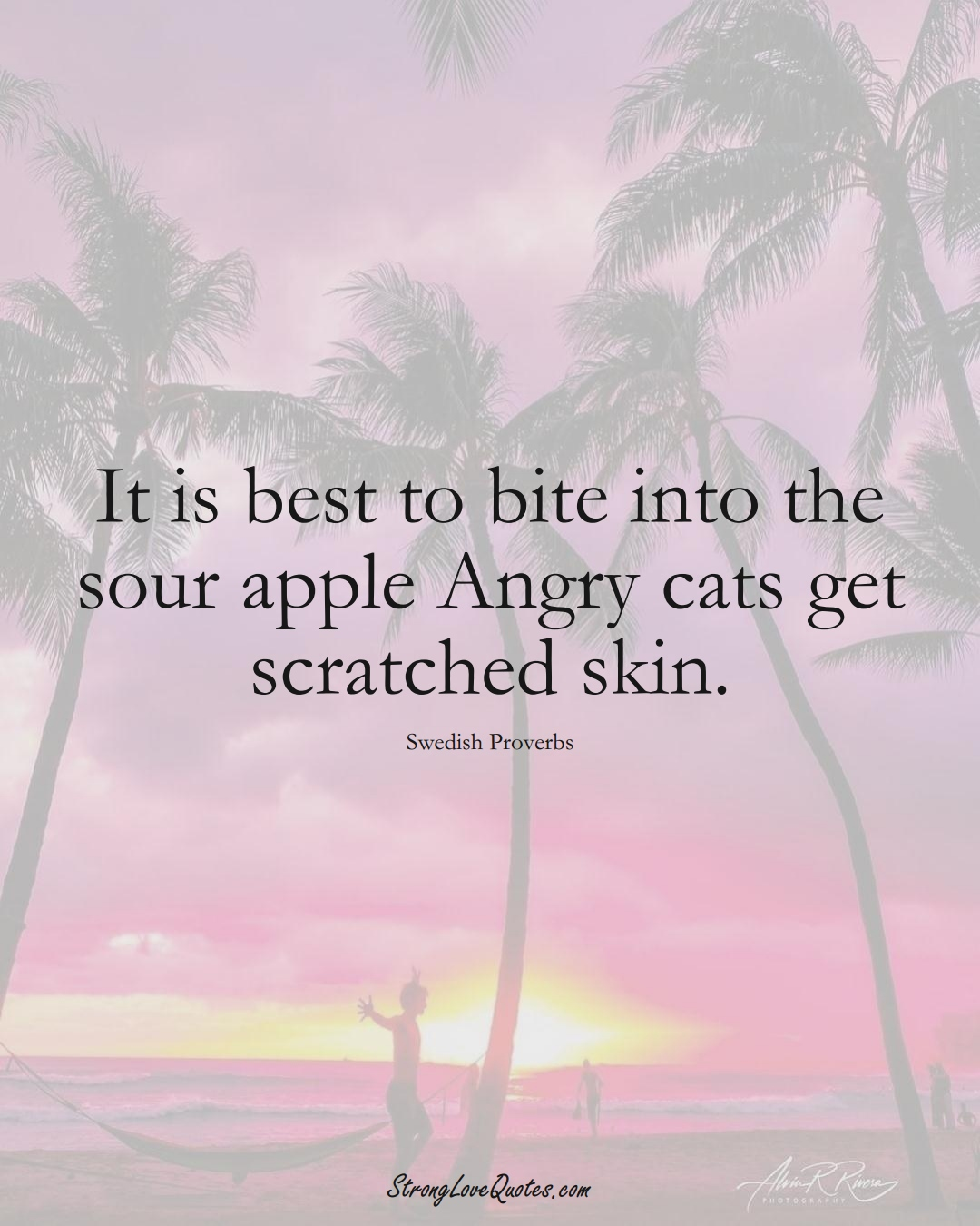 It is best to bite into the sour apple Angry cats get scratched skin. (Swedish Sayings);  #EuropeanSayings