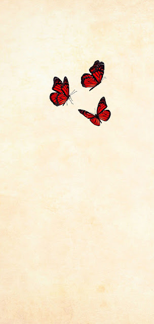 butterfly iphone wallpaper download