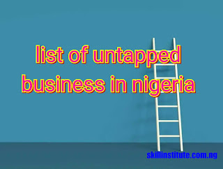 untapped business in nigeria