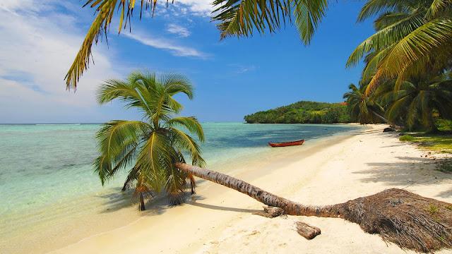 Découvertes des îles : Madagascar, Seychelles et Polynésie