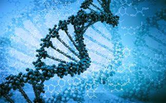 """Αποτέλεσμα εικόνας για """"Είναι στα γονίδια"""""""
