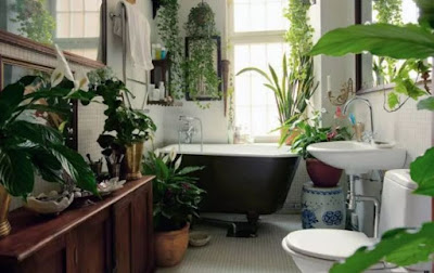 Houseplants decoration for unique bathroom decorating ideas give your bathroom natural ambiance