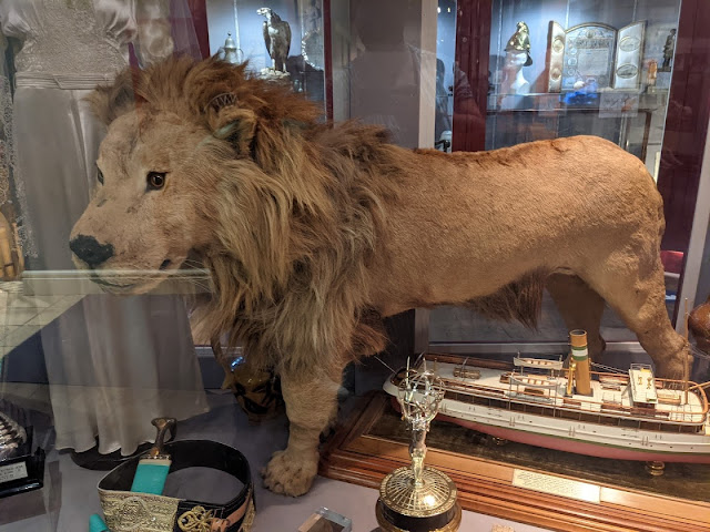South Shields Museum & Art Gallery   A Visitor's Guide  - lion