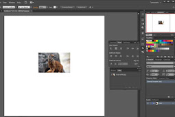 Cara Embed / Menggabungkan Gambar di AI Seperti Corel